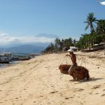 Experience the best of Nusa Lembongan on JungutBatu beach